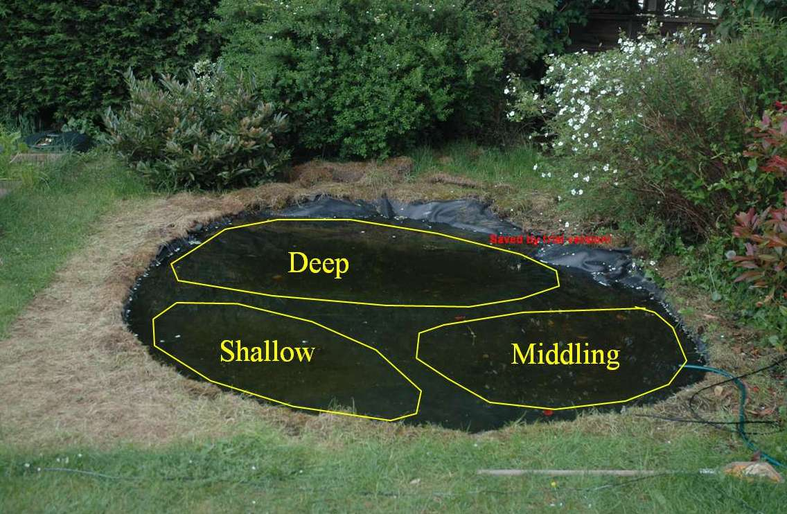 Ideas Garden Pond Edging