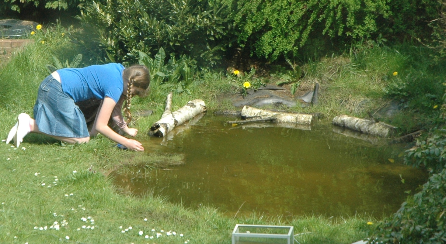 How to build a garden pond diy project full video youtube for Garden with a pond