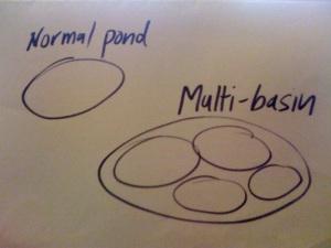 Single basin or multi-basin? I prefer the latter