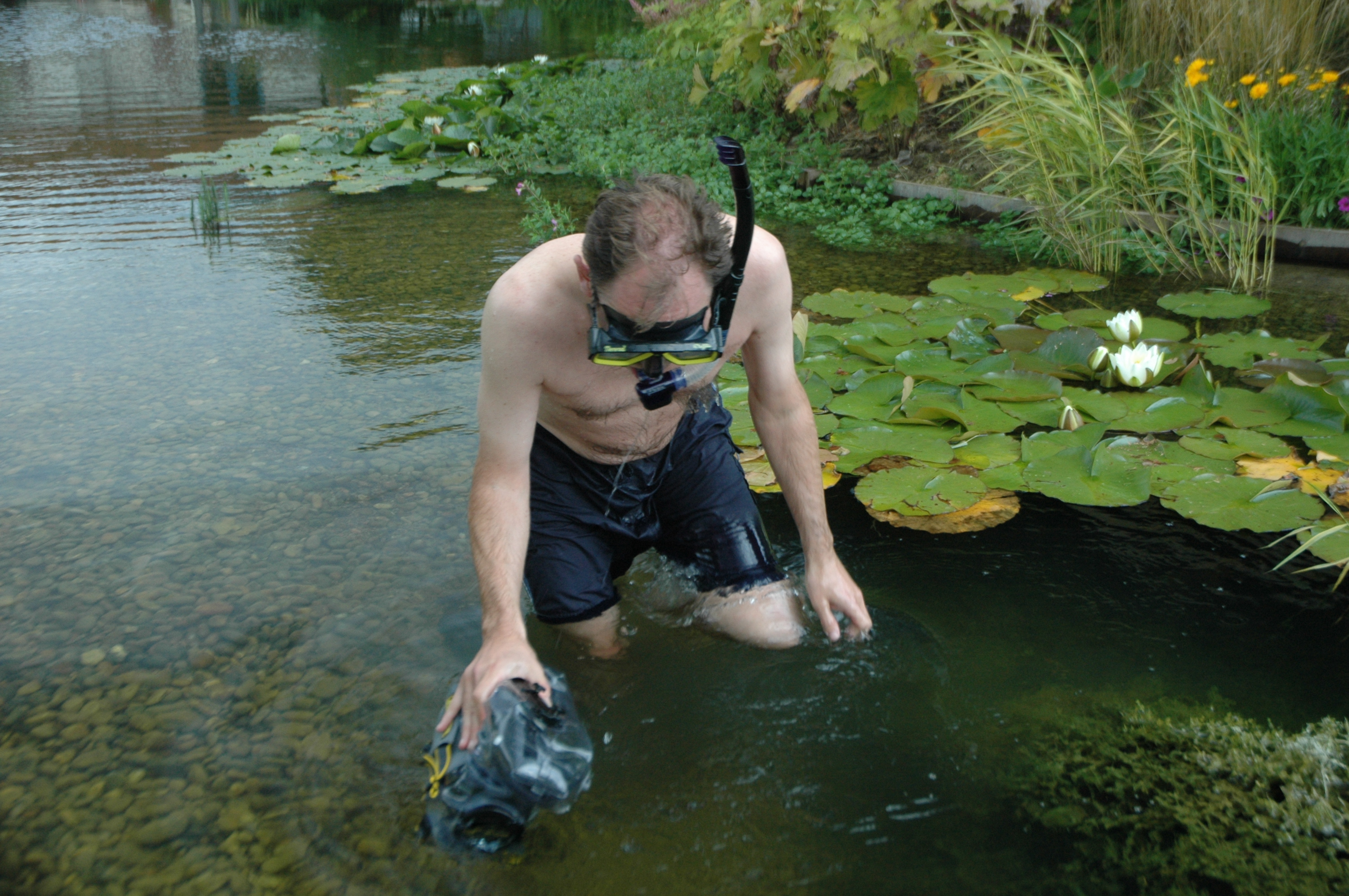 How To Empty Backyard Pond : Things you don?t often see in garden ponds  The Garden Pond Blog