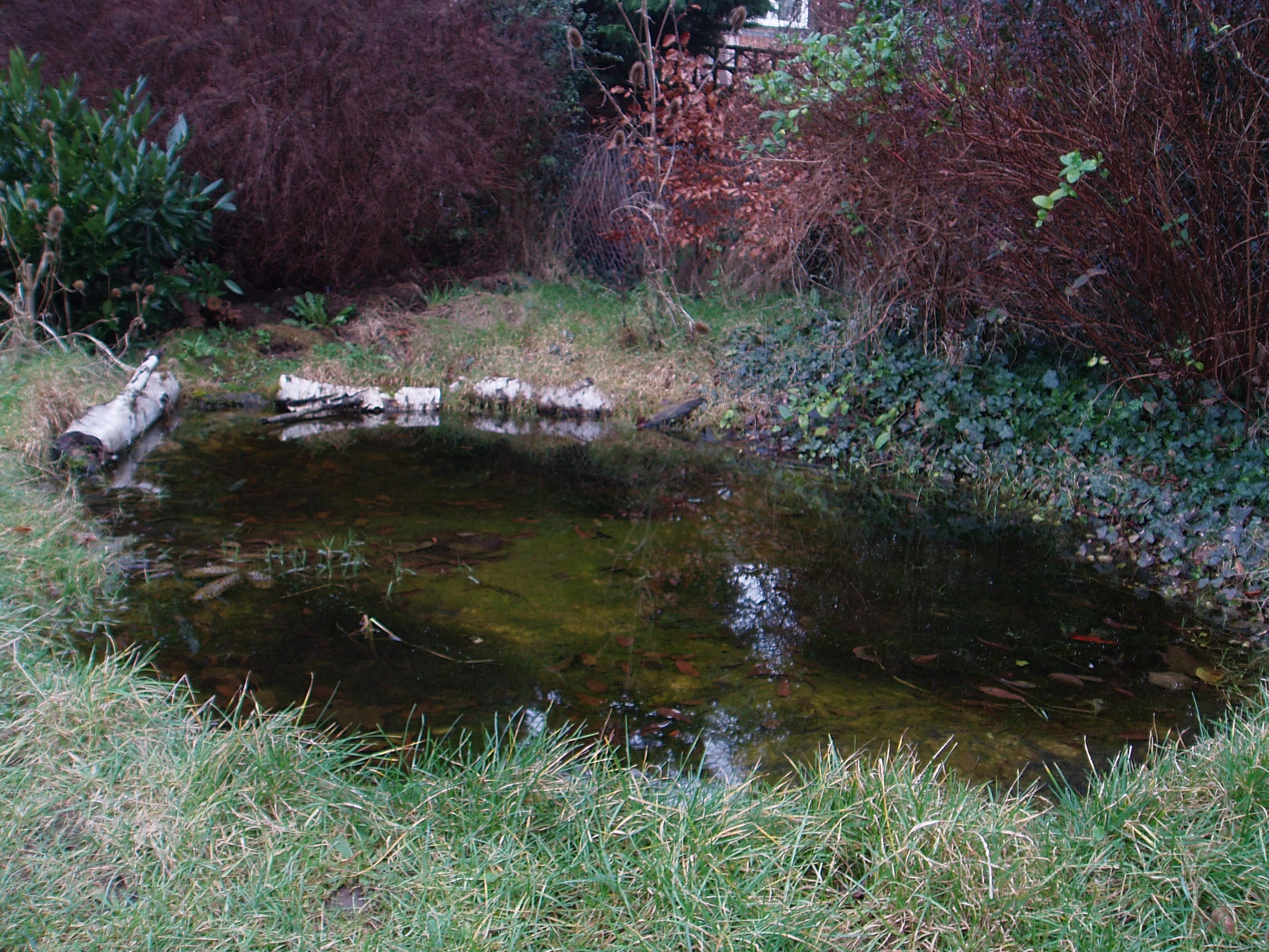 How to make a really good garden pond the garden pond blog for How to build a small lake