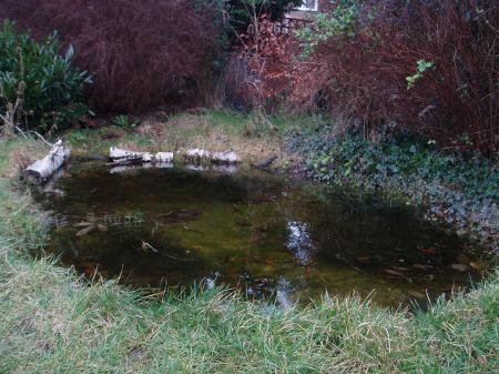How to make a really good garden pond the garden pond blog for How to clean a fish pond