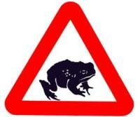Visit the Froglife website to join the Toads on Roads campaign