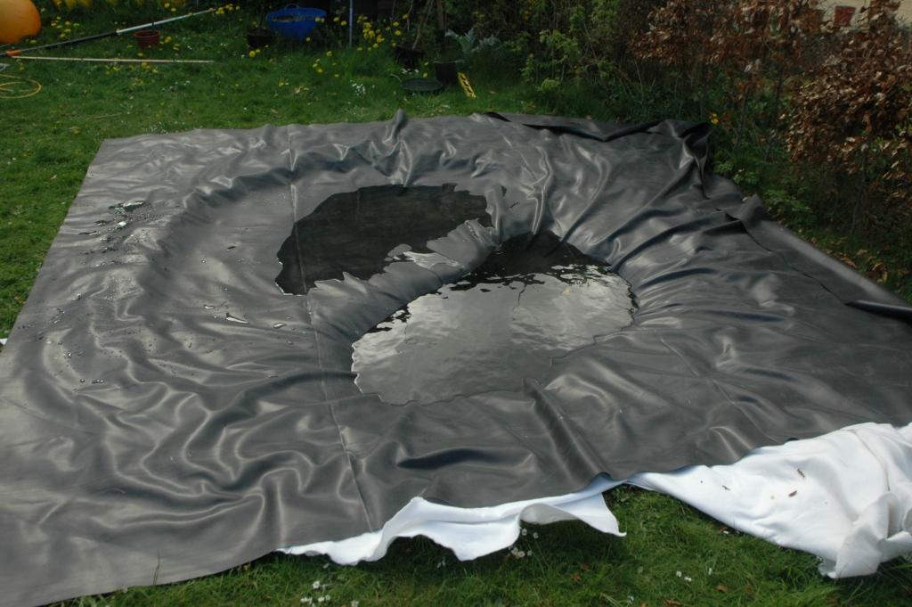 How To Make A Really Good Wildlife Pond 3 The Pictures
