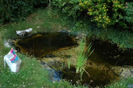 The old pond after adding a bit more clean sand to the middle shallows that divide the three basins: left is the 'deep' pool, currently about 15 cm; right is the 'middling' pool; front is the shallow pool