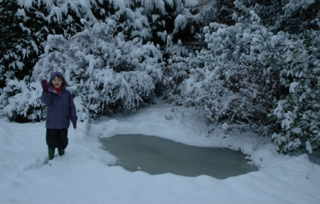 A reminder of last winter's snowy pond