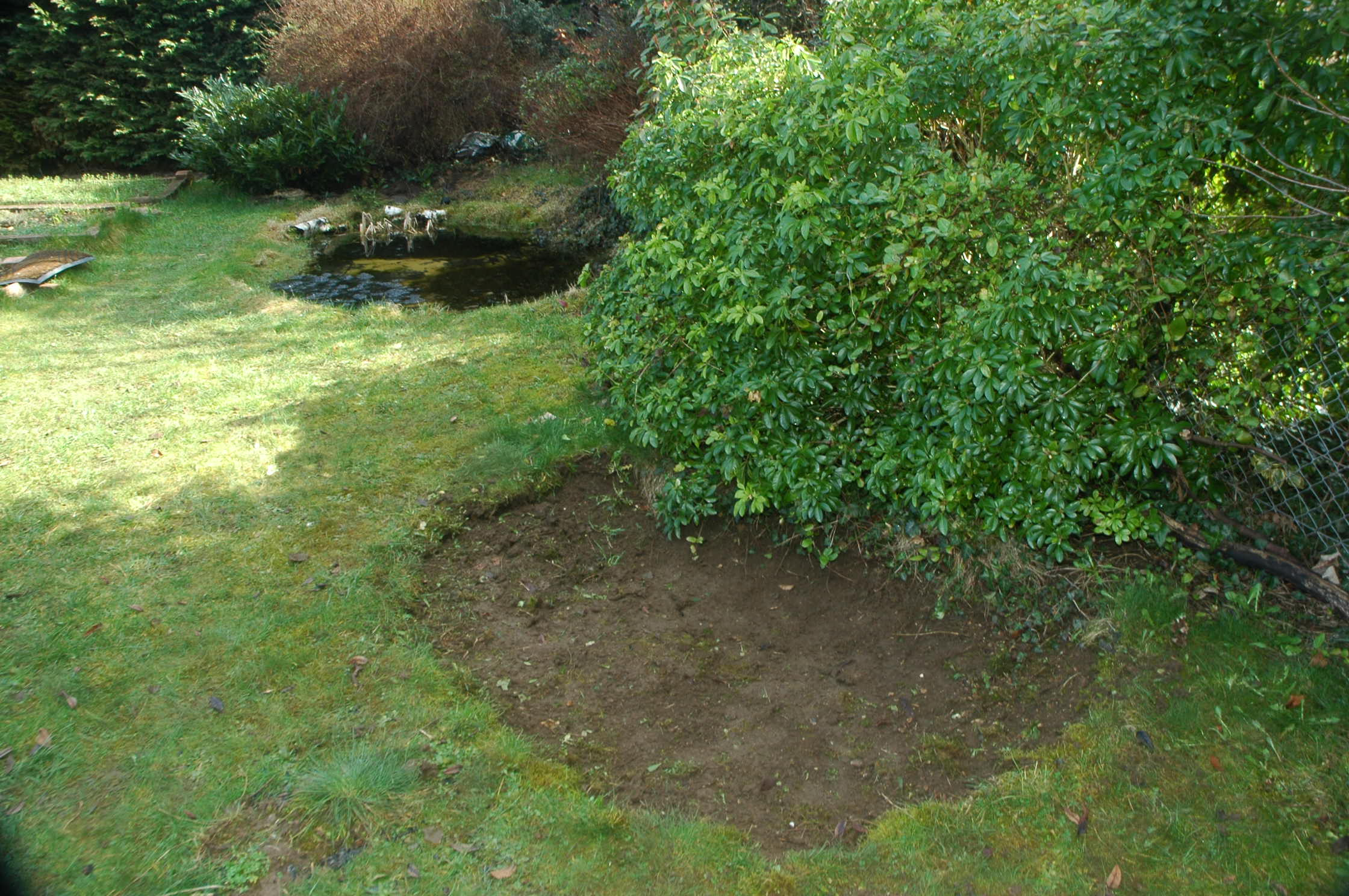 What S The Right Time To Make A New Pond The Garden Pond Blog