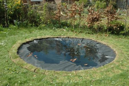 Edging the pond the garden pond blog for Making a pond with liner